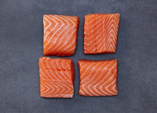 Fischseminar Edelfische